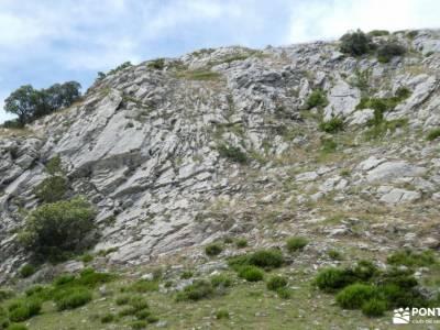 Montaña Palentina.Fuentes Carrionas; ruta puerto de canencia grupo pequeño senderismo madrid gente p
